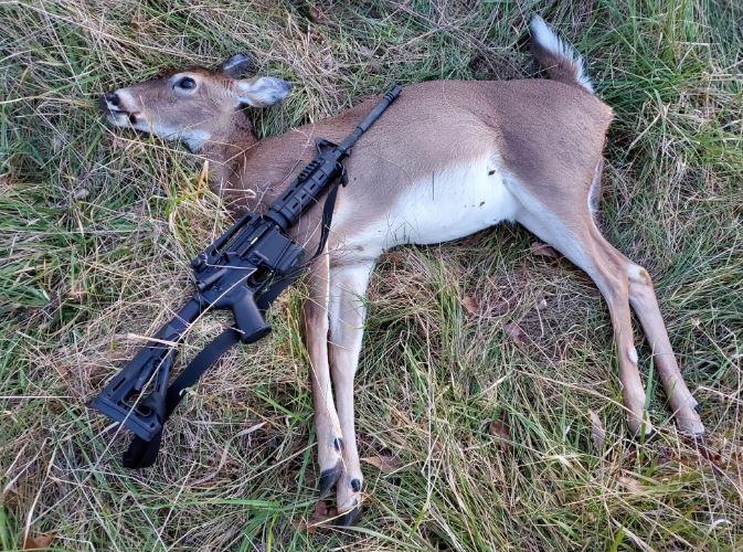 Click image for larger version  Name:1st Deer.JPG Views:116 Size:143.0 KB ID:294252