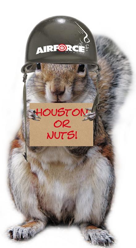 Click image for larger version  Name:AF-SquirrelHouston2013.jpg Views:34 Size:46.6 KB ID:73982