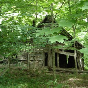 old house in the woods while hiking last summer